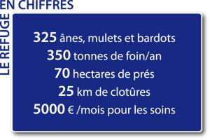 chiffres_refuge