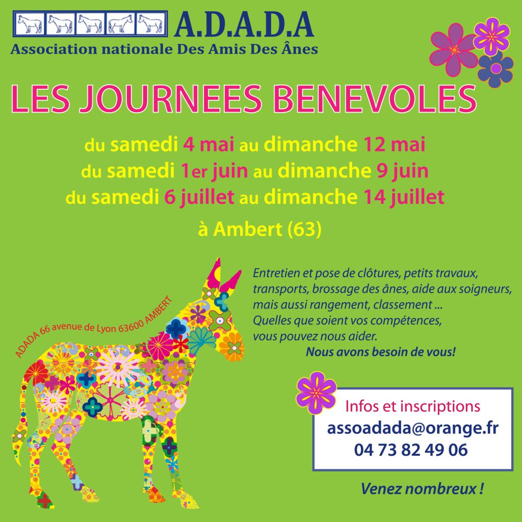 affiche journées bénévoles 2013