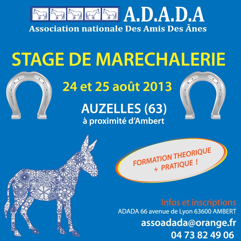 stage maréchalerie 2013