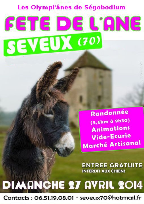 Exemple Affiche Ane 2014