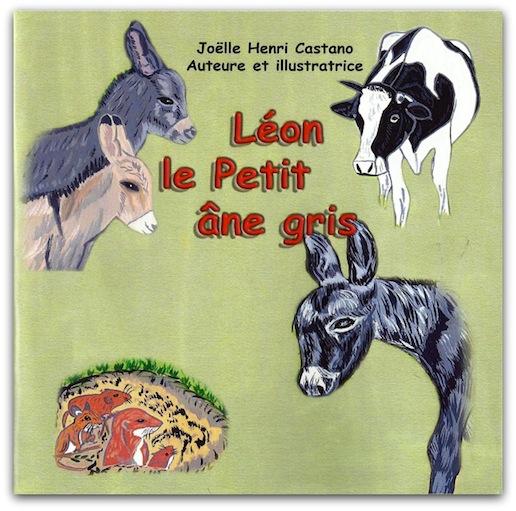 Léon petit âne gris