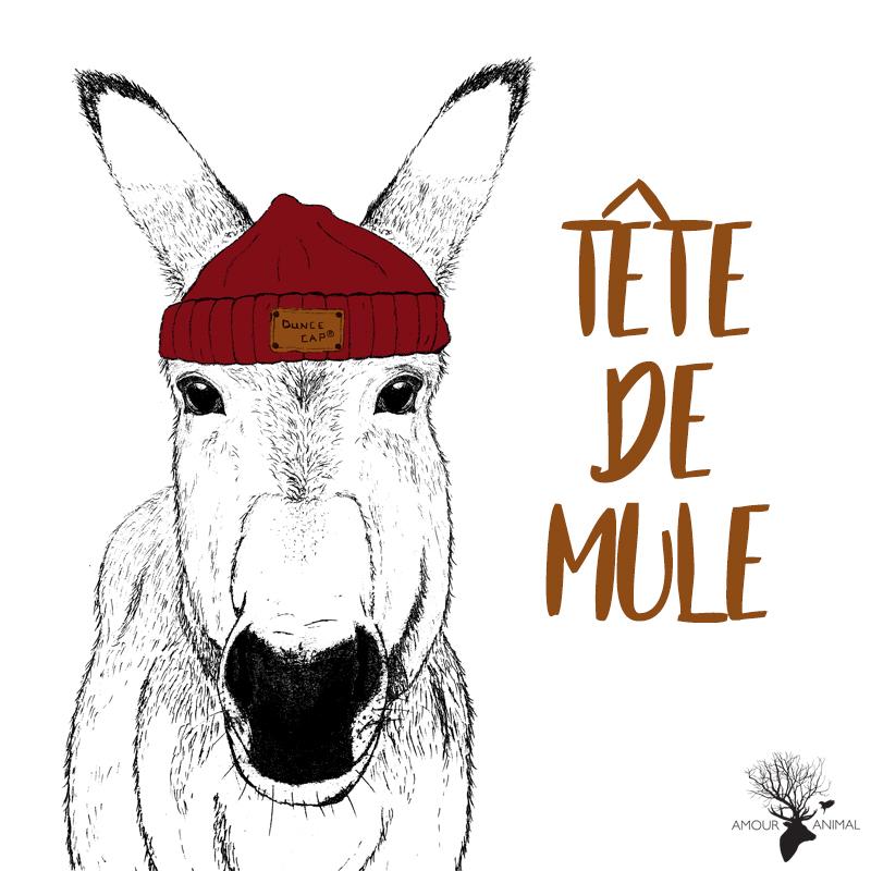 Sac-Tete_de_Mule-2b